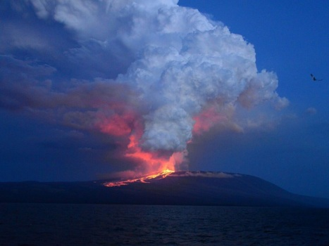 In this photo provided by Diego Paredes, guide of La Pinta Yatch Expedition, shows Wolf volcano erupting, at Isabela Island, Galapagos Islands, Ecuador, Monday, May 25, 2015. The volcano located on the northern tip of Isabela Island, erupted after 33 years of inactivity, but without jeopardizing human populations, tourism operations and fauna of this area, at the world famous Galapagos archipelago. (Diego Paredes Photo via AP) -NO SALES-